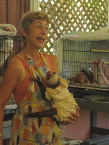 RTW-W9-Sloth Sanctuary-Ixus-241213-24